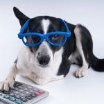Pam Britz's Under-Utilized Pet Tax Deductions